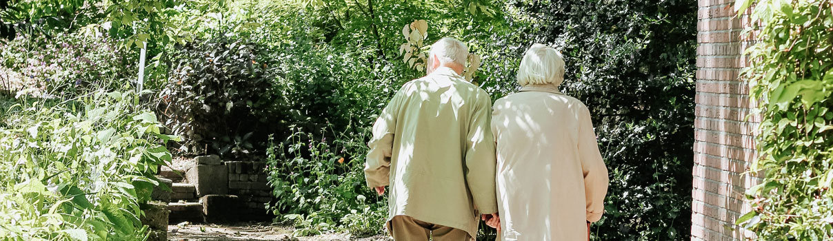 Elderly couple walking away from camera on a path surrounded by trees on either side